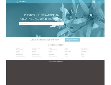 full Leo Images a Flat Gallery Responsive Web Template