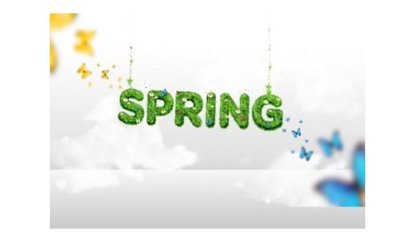 Amazing Spring Design BK